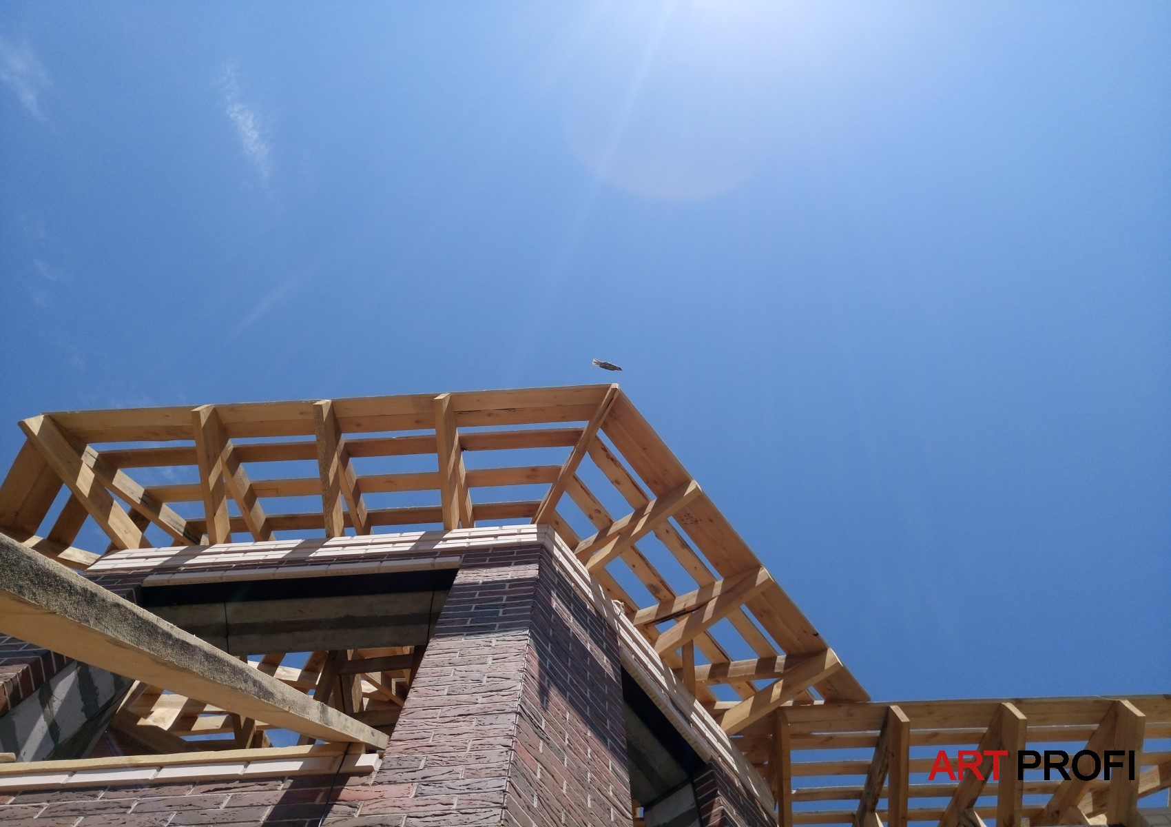 Строительство домов. Мягкая черепица.